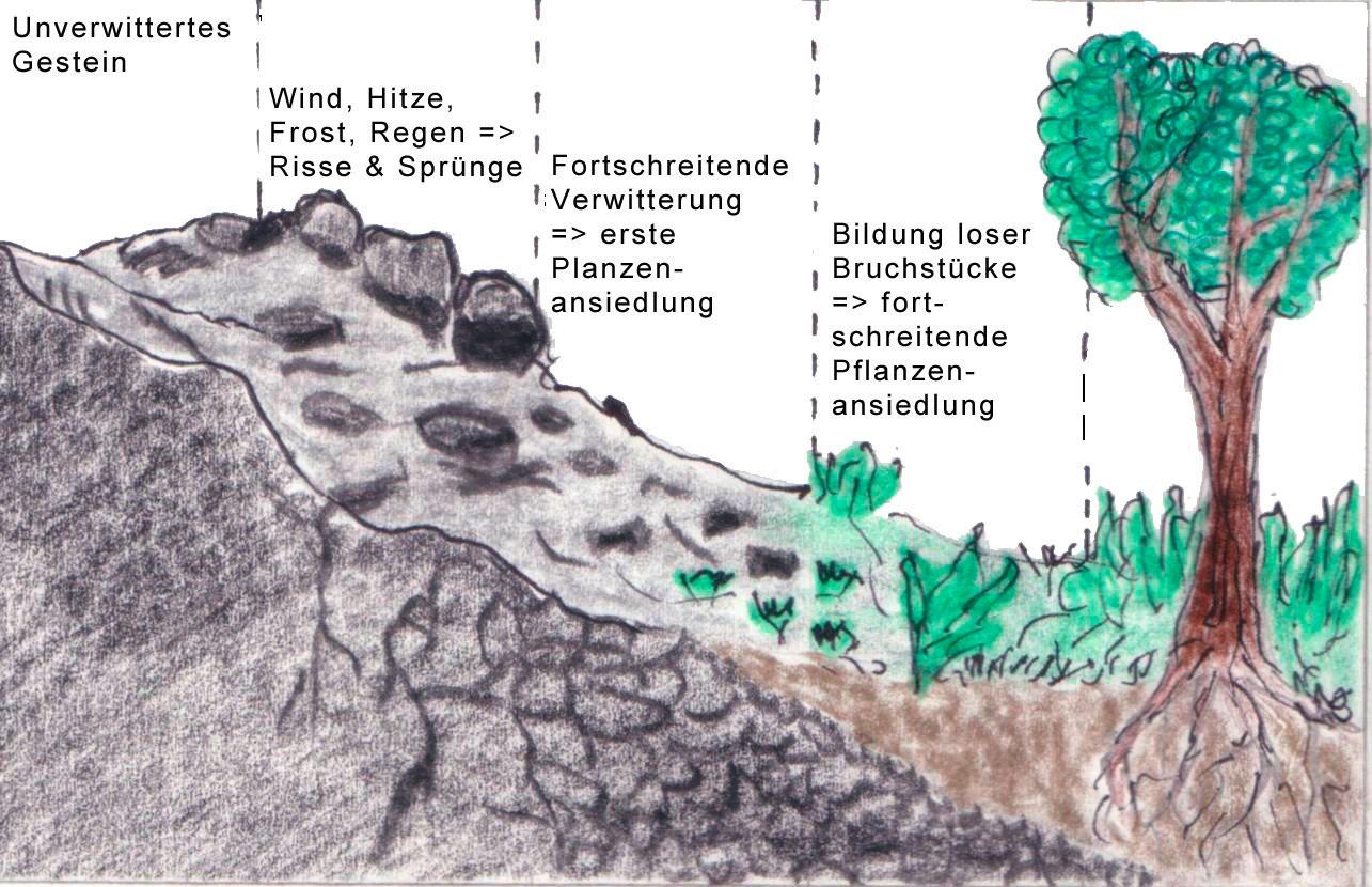 Land Oberosterreich Wie Entsteht Boden