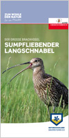 Der Große Brachvogel - Sumpfliebender Langschnabel